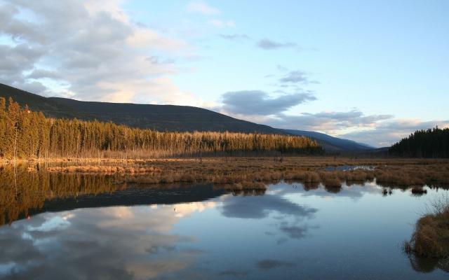 Восход у реки