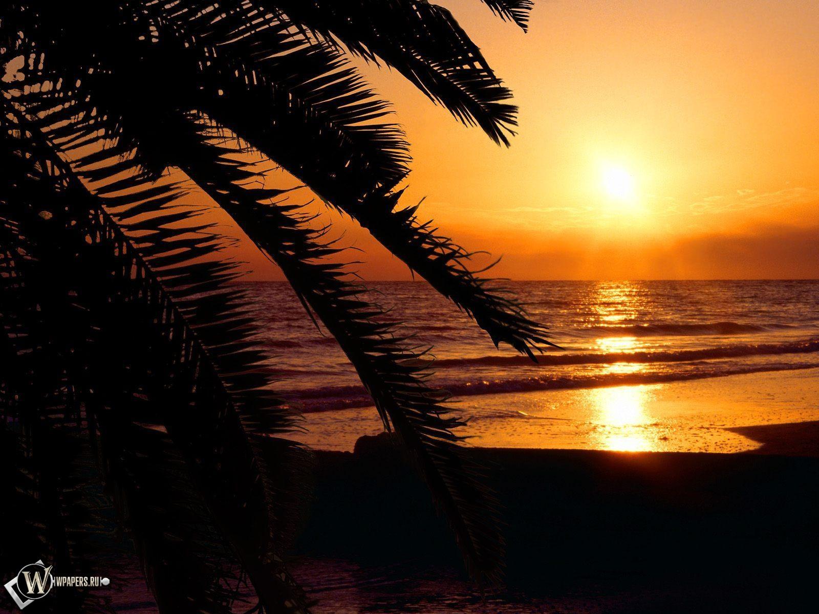 Обои ночной пейзаж море ночь закат