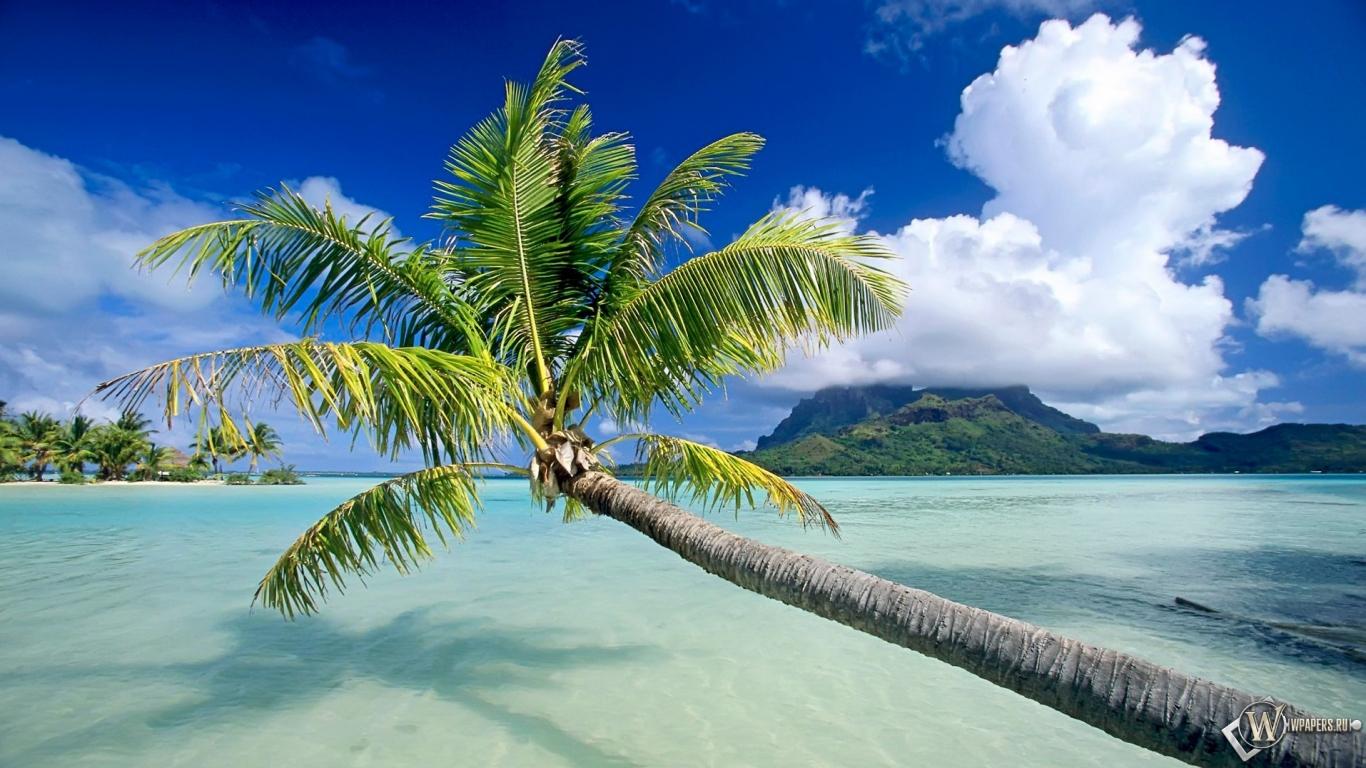 Обои bora bora пляж вода песок остров