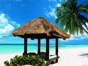 Обои Океанский пляж: Пляж, Вода, Океан, Relax, Вода и небо