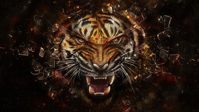Тигр разбивает экран