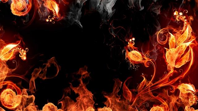 Огненые цветы