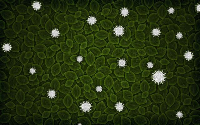 Цветы на листве