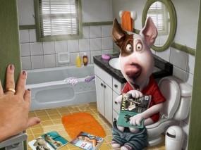Обои Собака в ванной комнате: Собака, Ванная комната, Журналы, Рендеринг