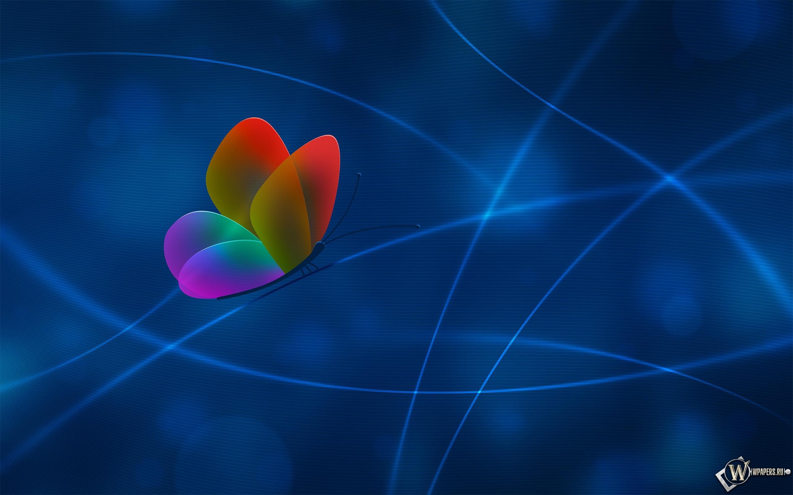 Разноцветная бабочка на синем фоне 2560x1600