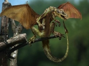 Обои Маленький дракон: Дерево, Дракон, Крылья, Рендеринг