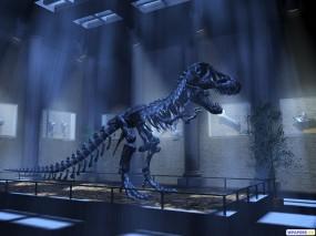 Обои 3D Динозавр: Скелет, Динозавр, Музей, История, Рендеринг