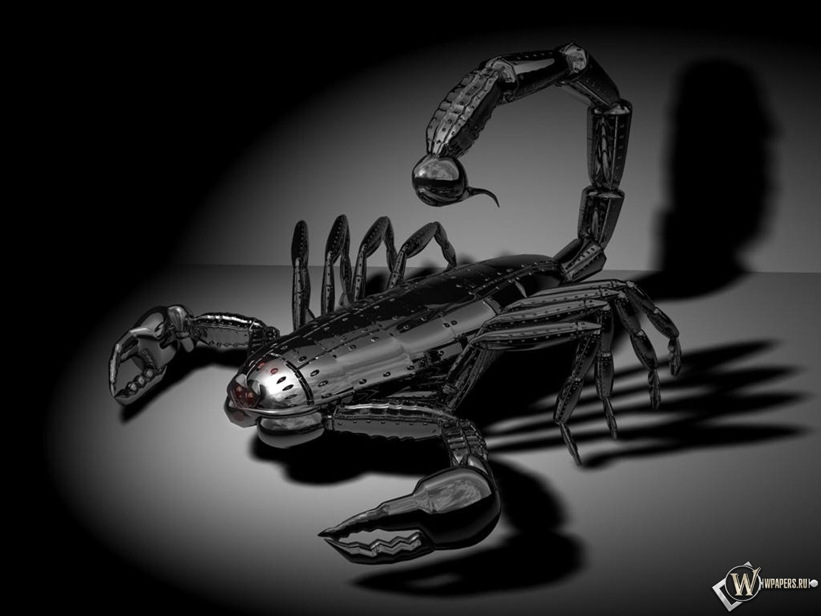 3D Скорпион 1600x1200