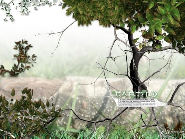 3D природа