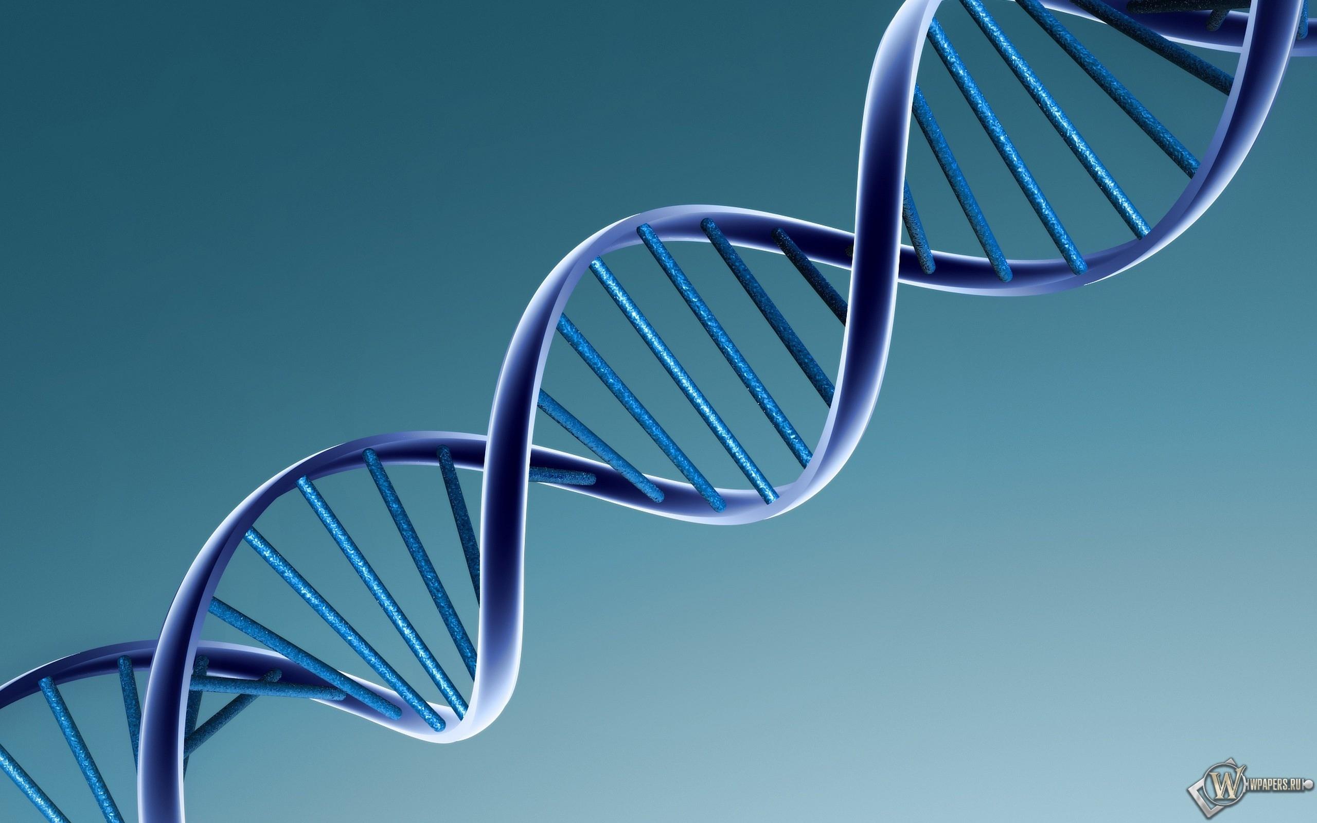 ДНК 2560x1600