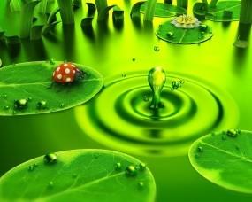 3D болото