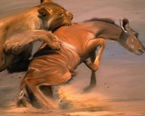 Обои Лев на охоте: Рисунок, Лев, Охота, Добыча, Разное