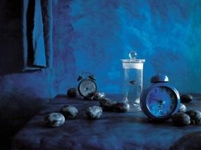 Обои Фотопейзаж Часы: Время, Бабочки, Часы, Слива, Разное