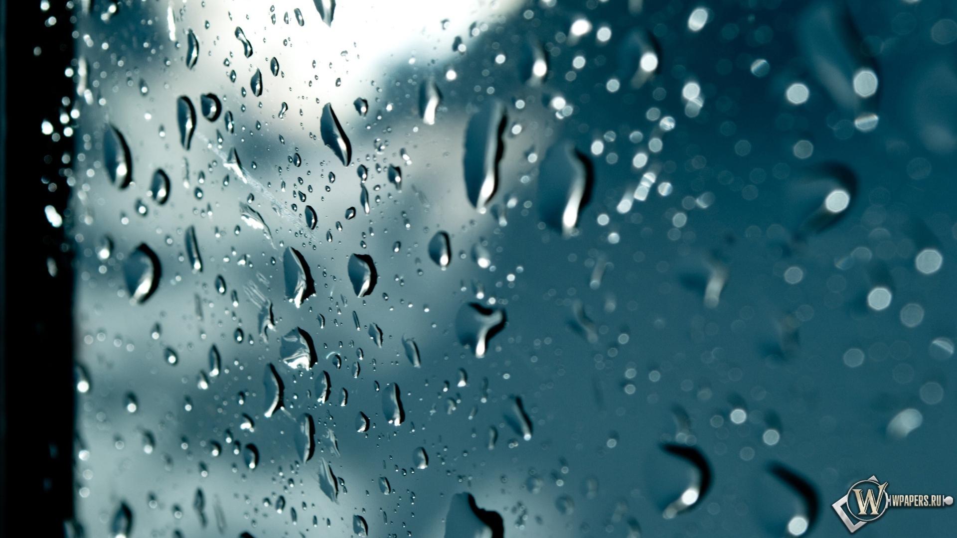 Обои капли, дождь, стекло. Разное foto 16