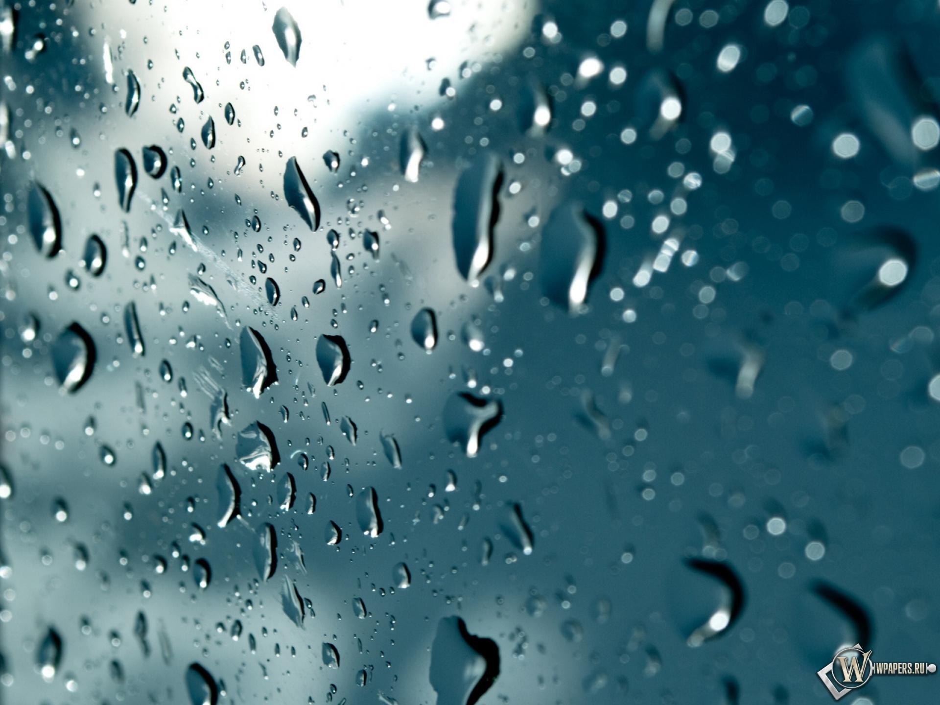 Обои Живые На Телефон Дождь