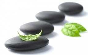 Обои Камни с листьями: Камни, Лист, Минимализм, Разное