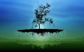 Обои Парящее дерево: Остров, Дерево, Разное