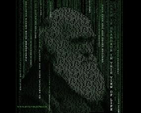 Обои Матричный Дарвин: Матрица, типографика, Дарвин, Разное