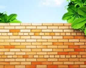 Обои Стена из кирпичей: Зелень, Стена, Кирпич, Разное
