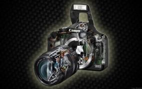 Обои Canon, Eos 500d: Canon, Фотоаппарат, Разное