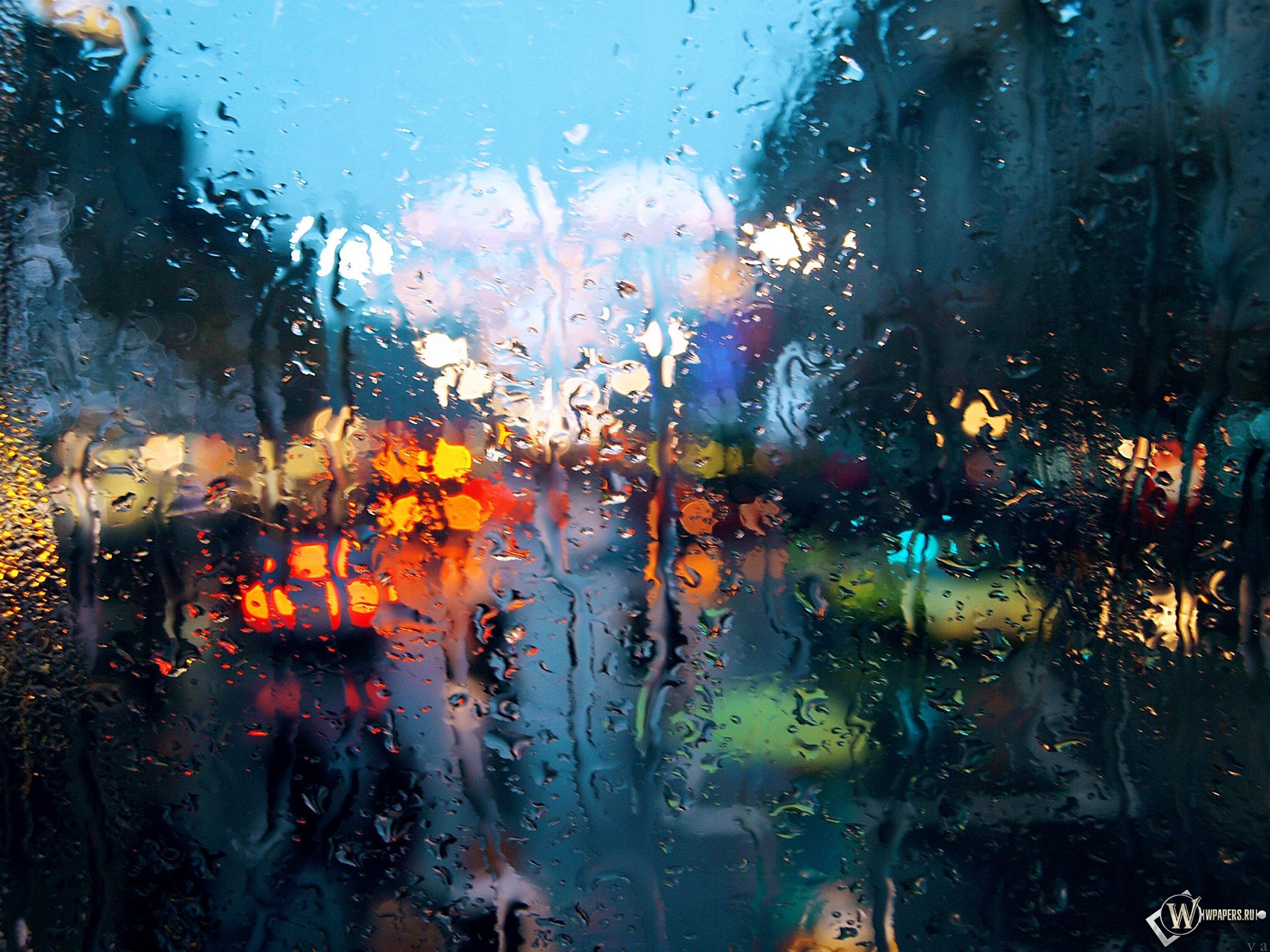 фотографирование через мокрое стекло крупная лесная