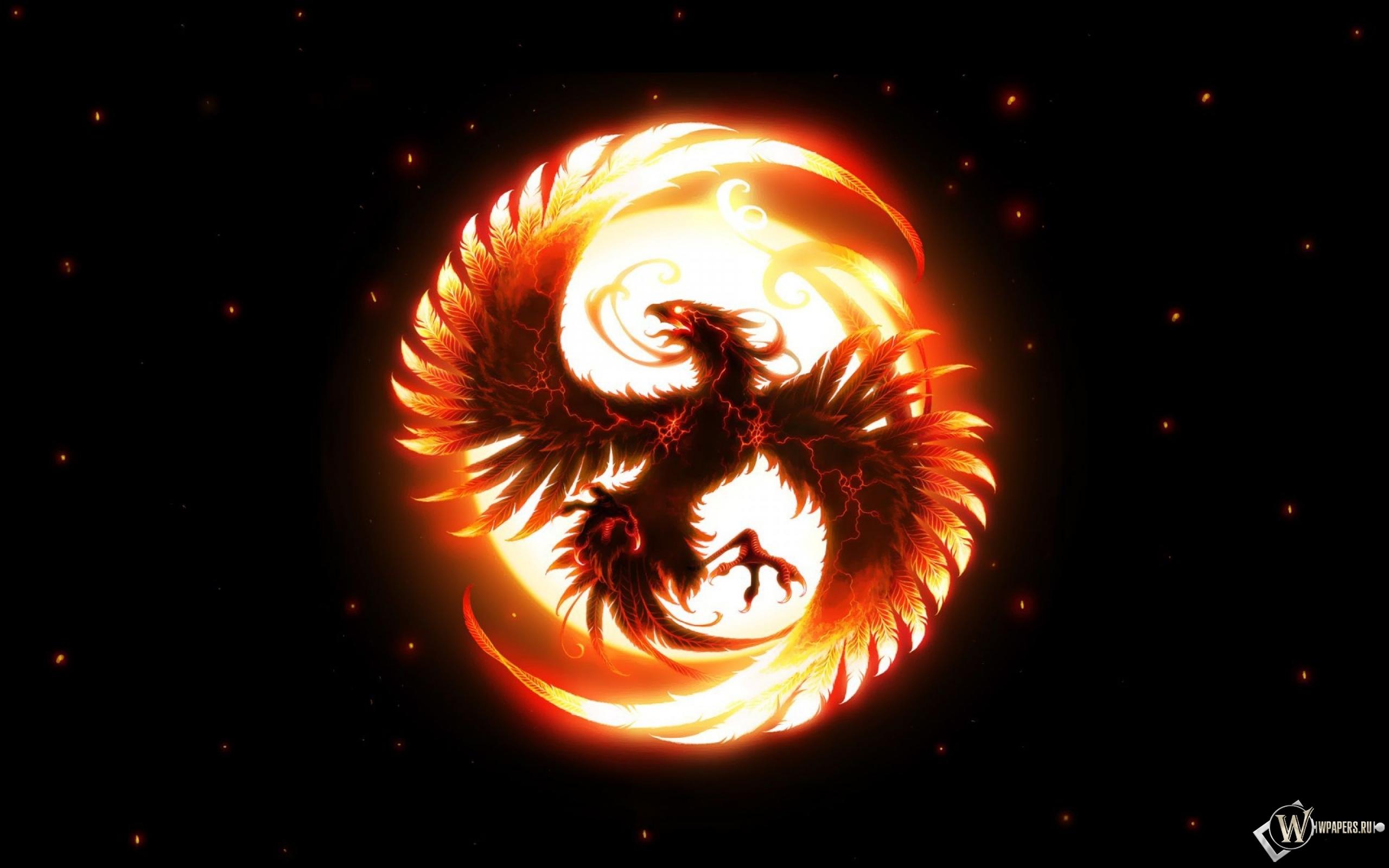 Phoenix 2560x1600