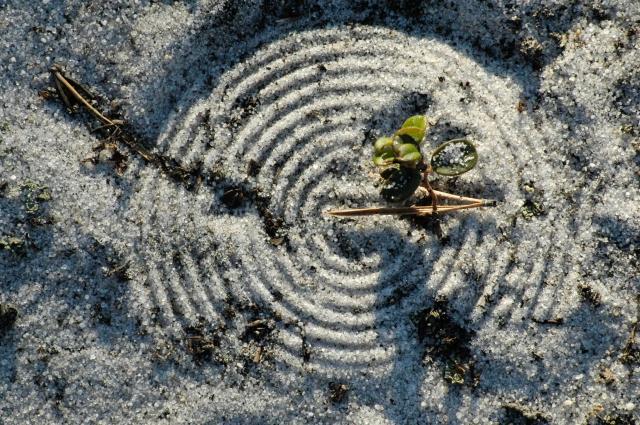 Круги на песке