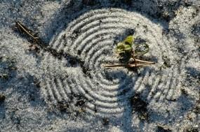 Обои Круги на песке: Песок, Узор, Круги, Разное