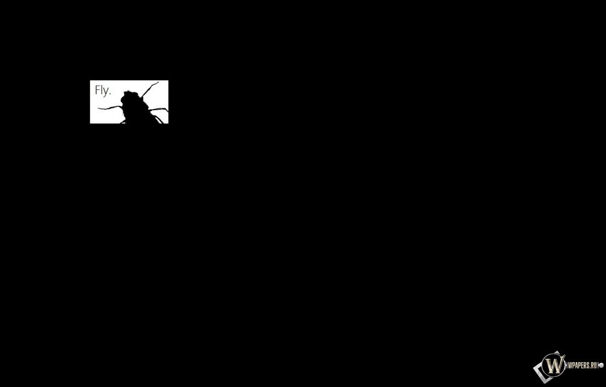 Fly (Минимализм) 1200x768