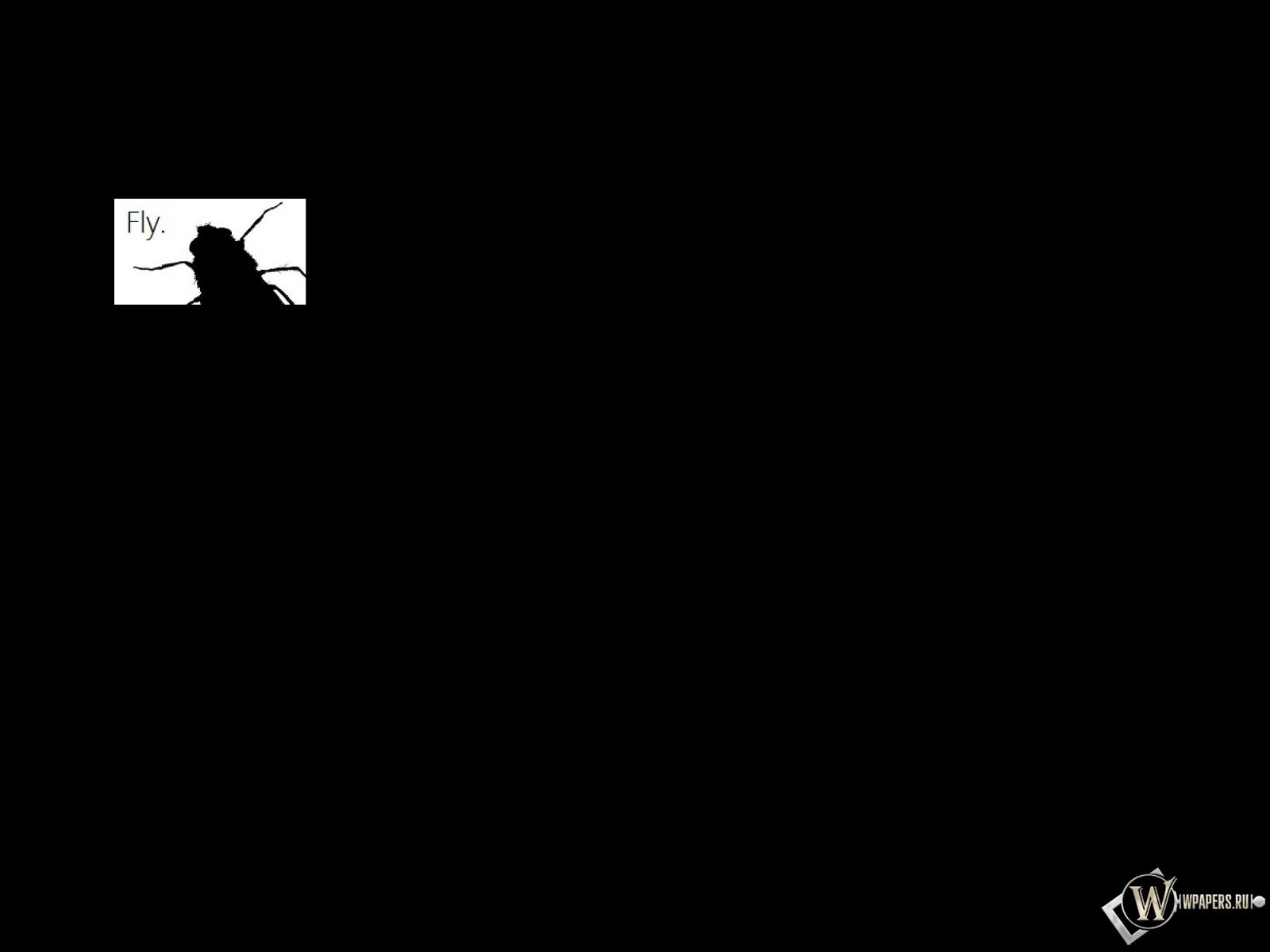 Fly (Минимализм) 1600x1200