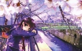 Обои Сакура: Мост, Взгляд, Нежность, Сакура, Аниме