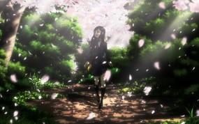 Обои Cardcaptor Sakura: Девушка, Лепестки, Аниме, Сакура, Аниме