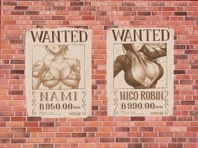 Обои One Piece: Стена, Аниме, One piece, Аниме