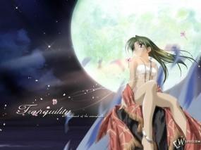 Обои 3D Девушка при луне: , Аниме