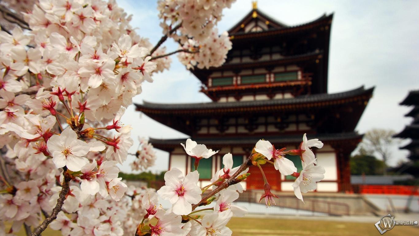 Пагода в Японии 1366x768