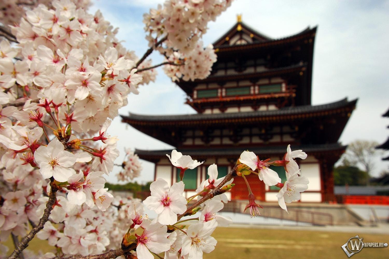 Пагода в Японии 1500x1000