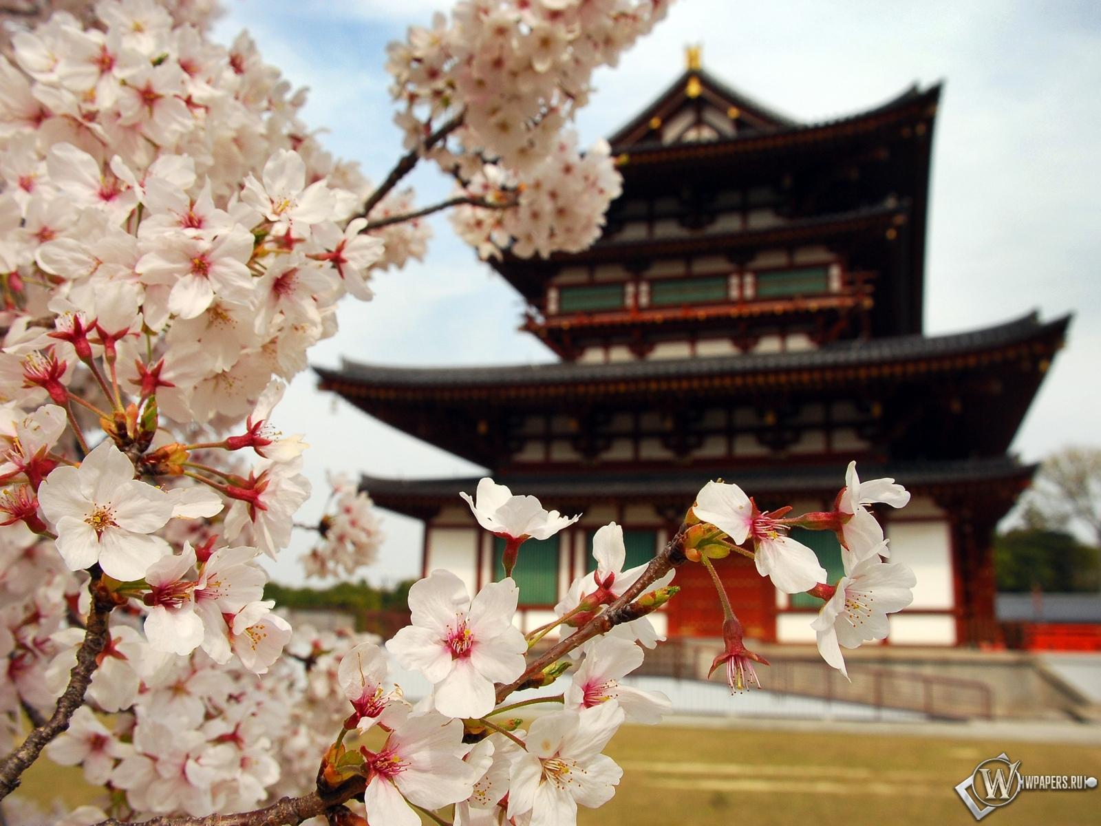 Пагода в Японии 1600x1200