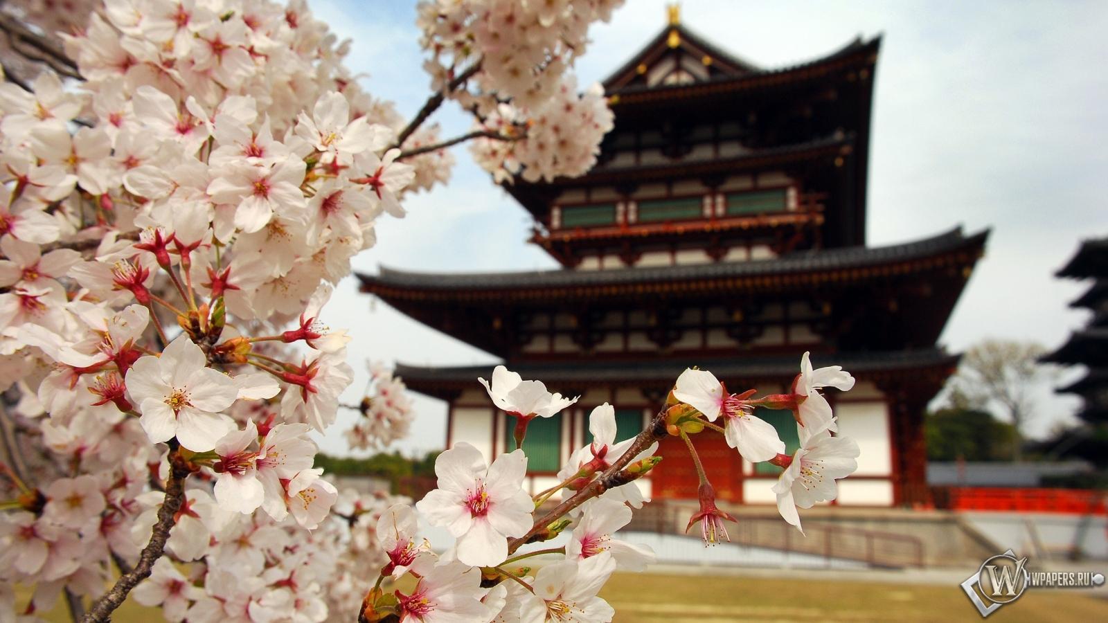 Пагода в Японии 1600x900