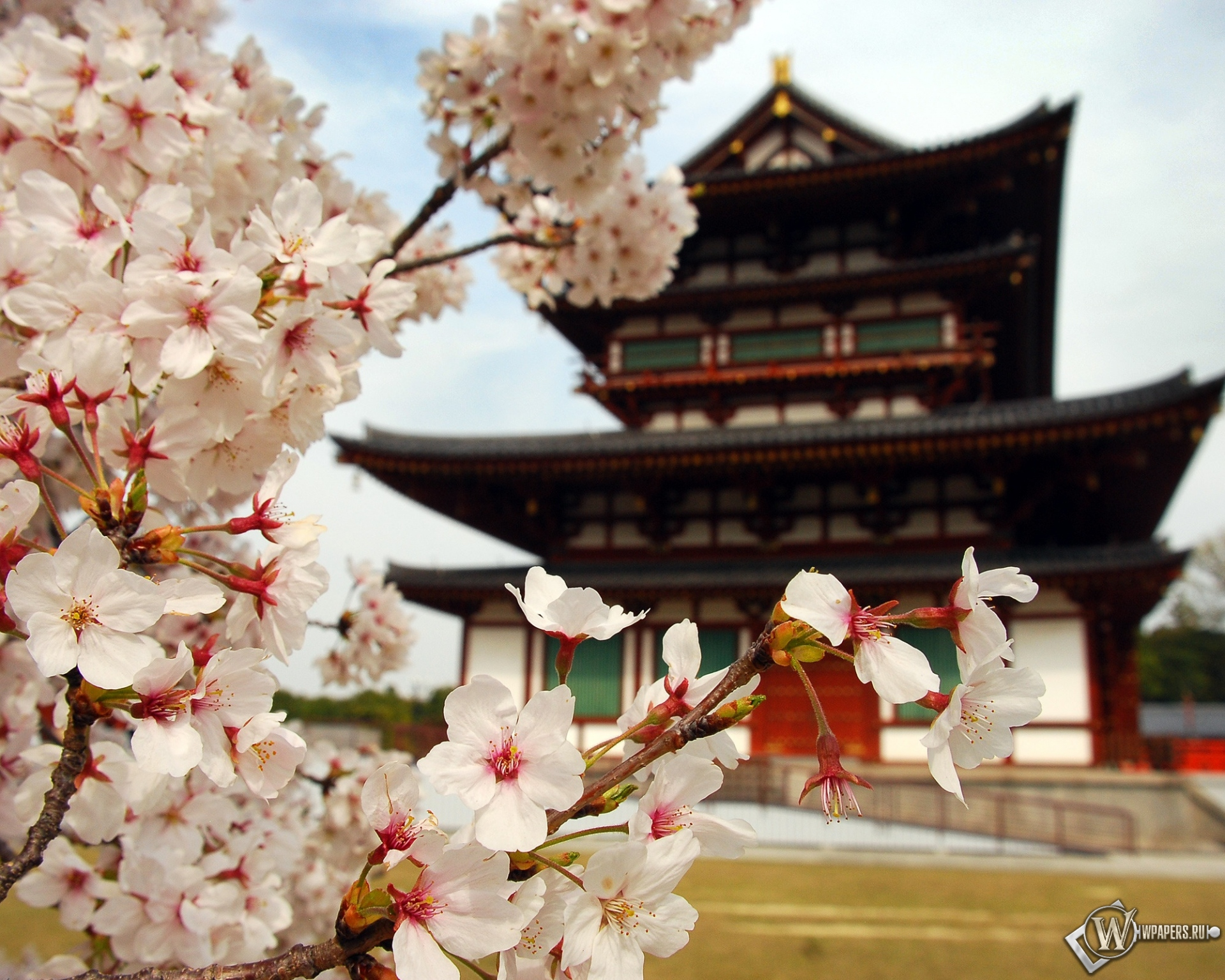 Пагода в Японии 1920x1536