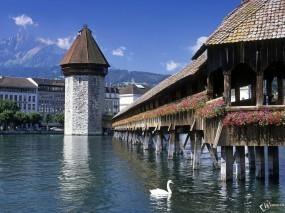Обои мост Каппельбрюкк Люцерн: Мост, Лебедь, Швейцария, Города и вода