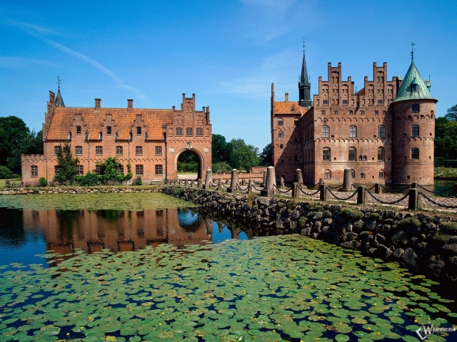 Замок и кувшинки