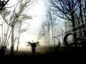 Обои Чёрный ангел: Лес, Тень, Фэнтези