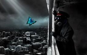 Обои Романтика апокалипсиса: Бабочка, Апокалипсис, Капитан, конец, Фэнтези