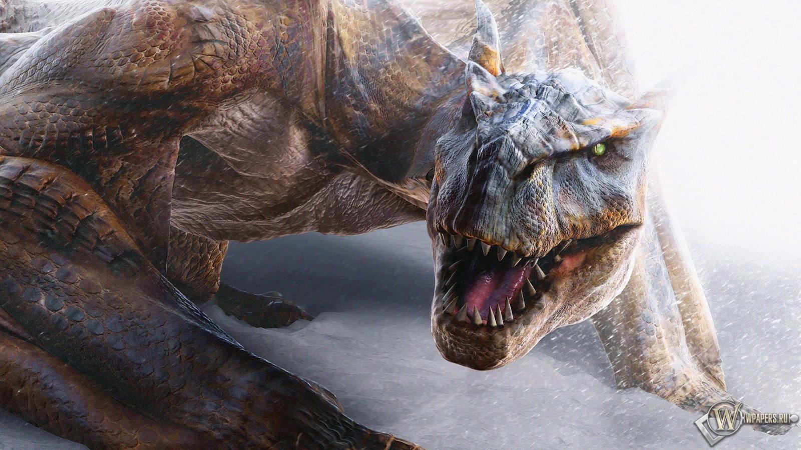 Дракон 1600x900
