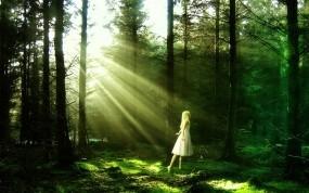 Обои Девочка в лесу: Свет, Лес, Лучи солнца, Девочка, Фэнтези - Девушки