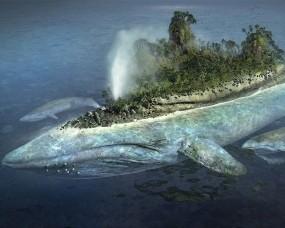 Обои Остров на ките: Океан, Остров, Кит, Фэнтези - Природа