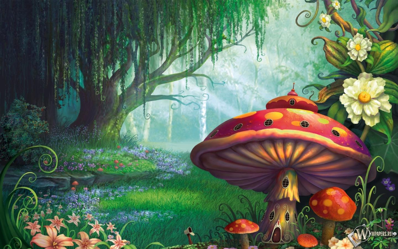 Сказочный лес  1440x900