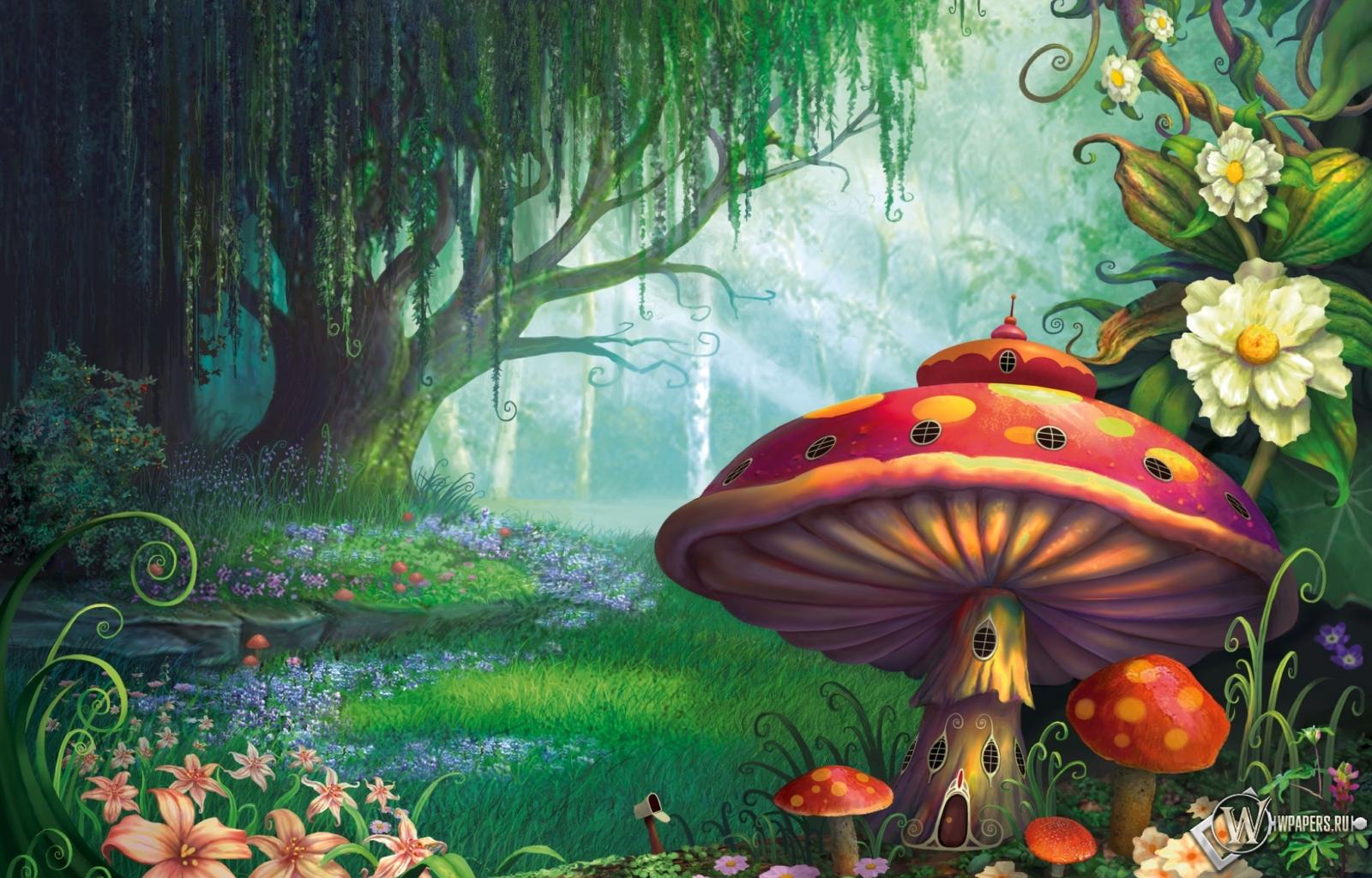 Сказочный лес  1600x1024