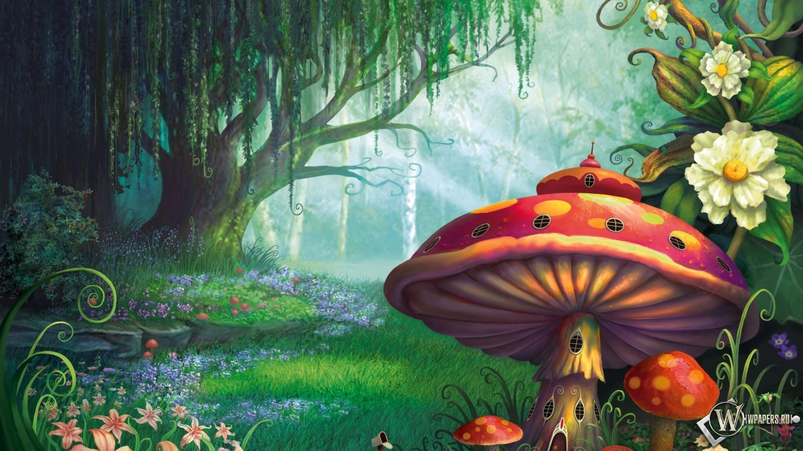 Сказочный лес  1600x900