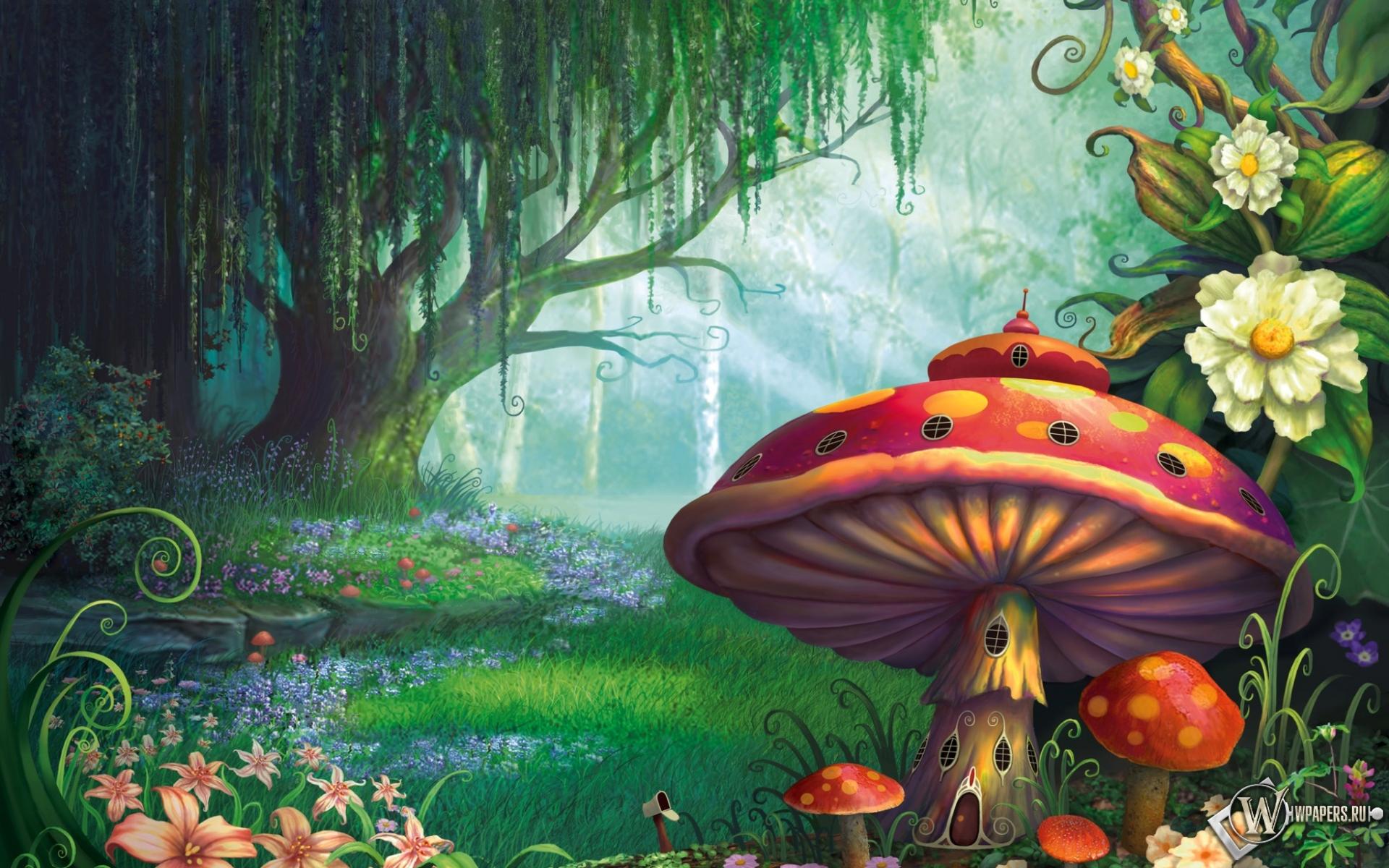 Сказочный лес  1920x1200